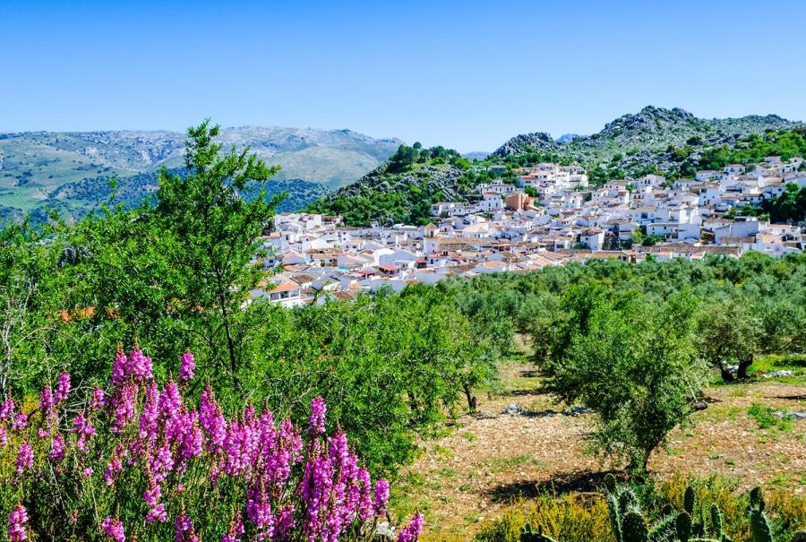 reasons to travel to andalucia