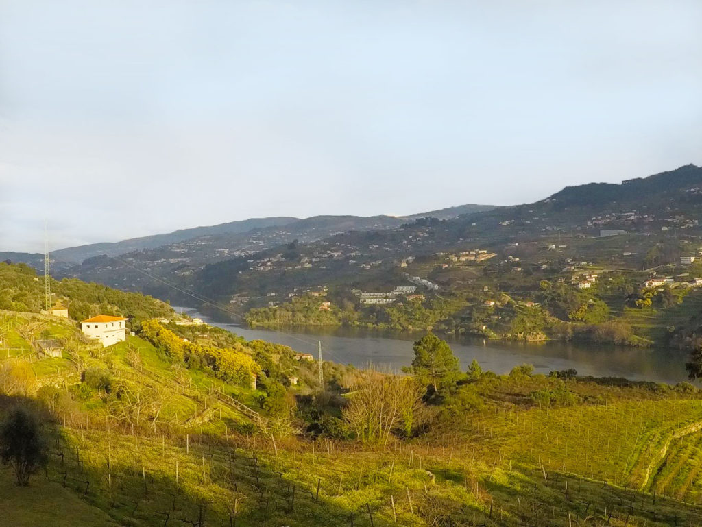View from the Douro Valley