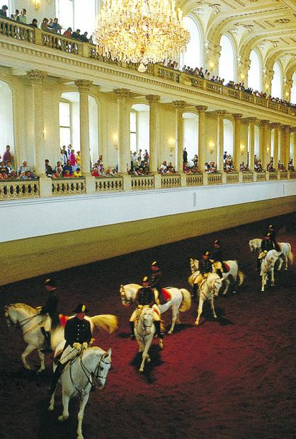 Vienna Spanish horse riding school