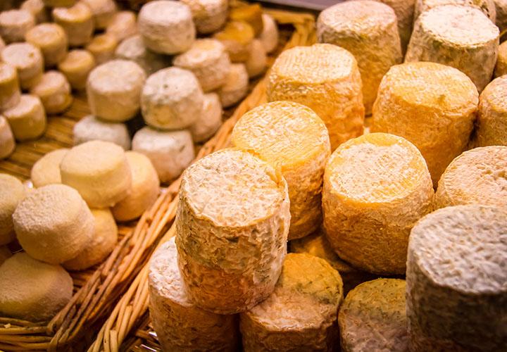 Goats cheese, Les Halles, Avignon Market