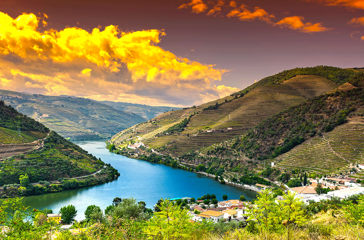 spring river cruise douro valley