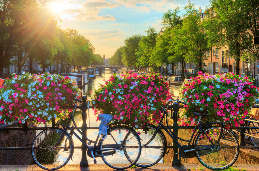 spring river cruise amsterdam canal with bicycle and flowers