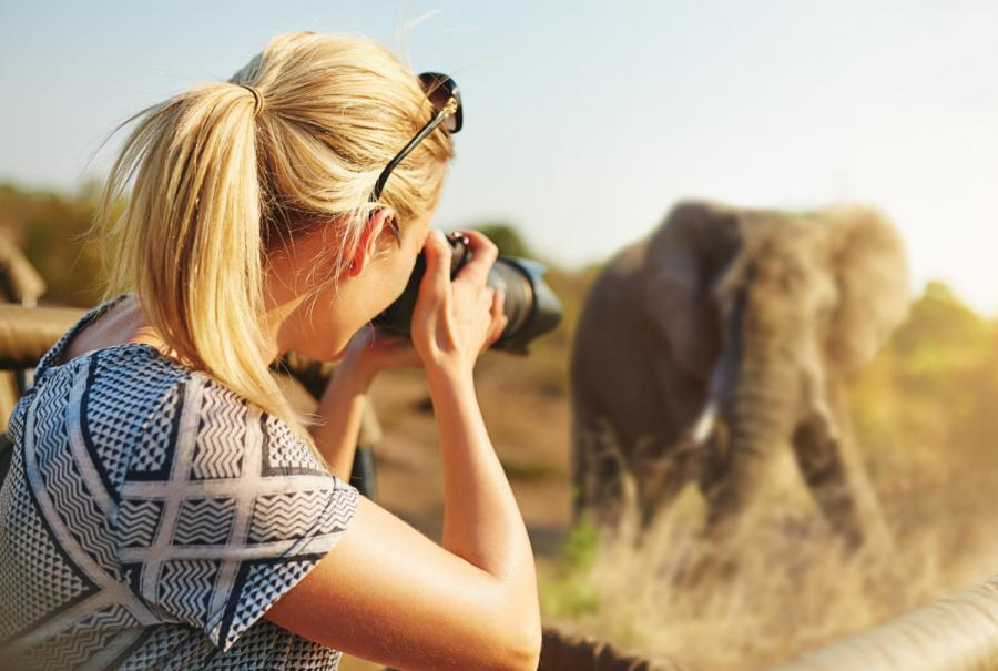 What to wear on safari woman photographing elephant