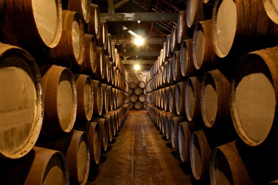 port tasting in porto port wine cellar