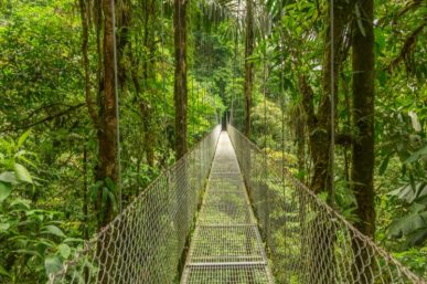 First Timer's Guide to Costa Rica Tours