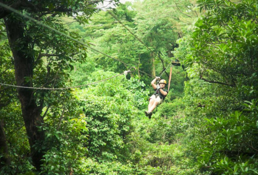 costa rica tours ziplining in forest