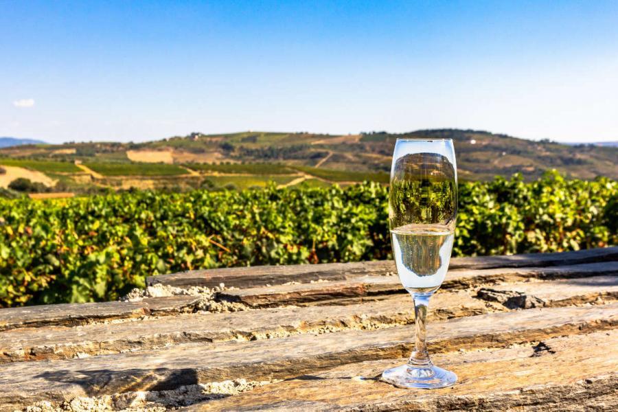 douro cruise glass of raposeira in the douro valley vineyard