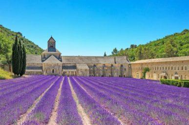 20 Reasons to Visit Provence
