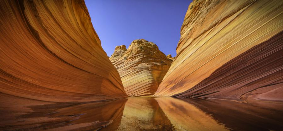 US national parks the wave rock formation zion national park