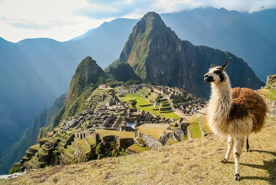 ultimate over 55 must visit list machu picchu peru with an alpaca