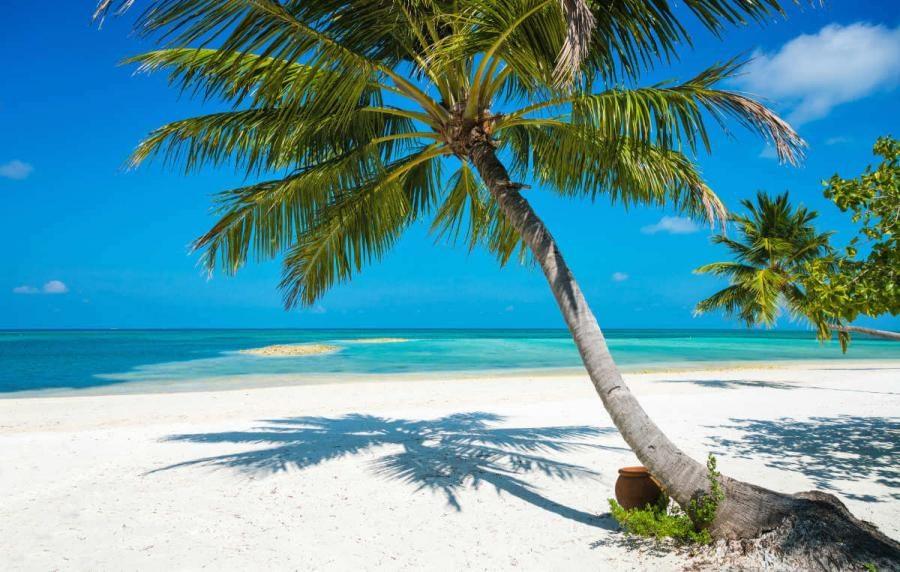 maldives cruise beach herathera island