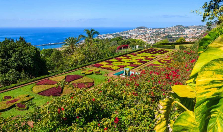 Best European cities to visit in winter Monte Tropical Gardens Funchal Medeira