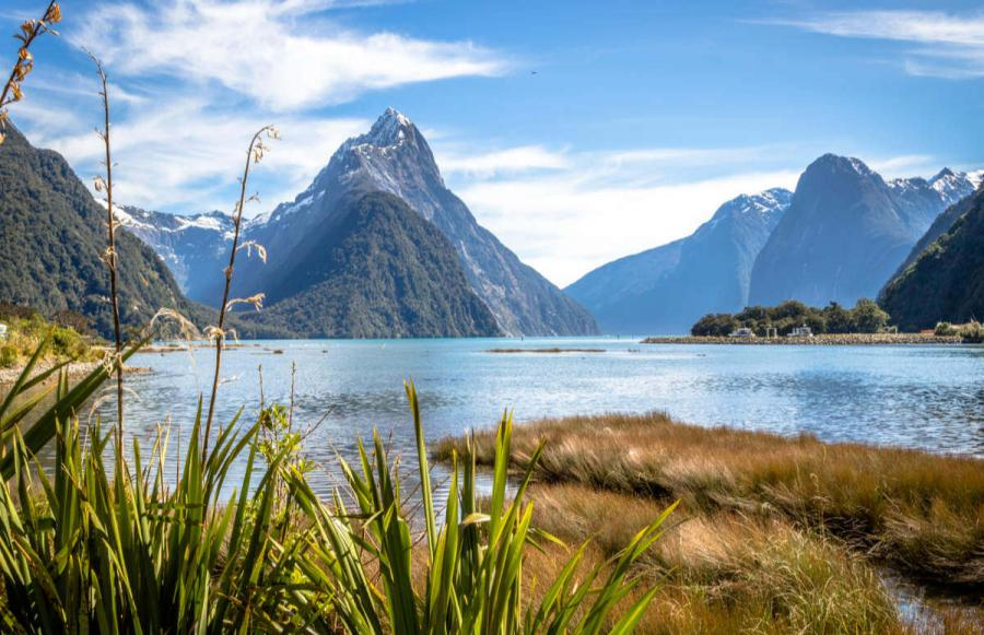 best things to do in new zealand milford sound
