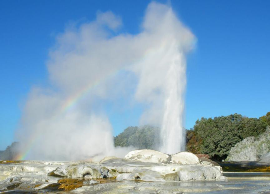 best things to do in new zealand pohutu geyser in rotorua