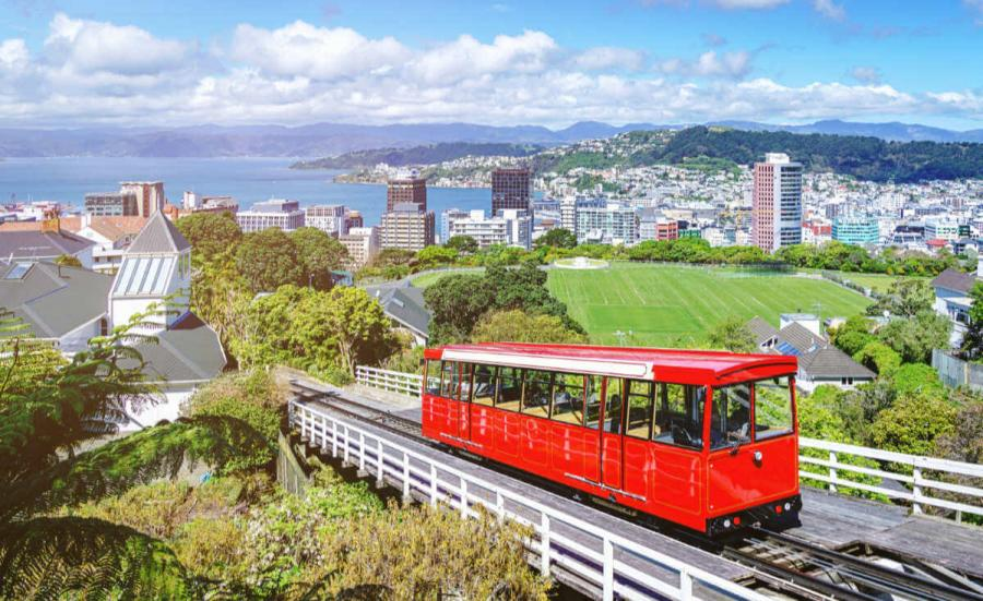 best things to do in new zealand wellington