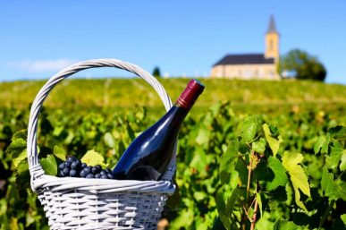 Wine Tasting Tours – 9 of the Best Wine Regions to Visit