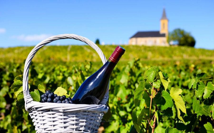 wine tasting tours a bottle of red wine france