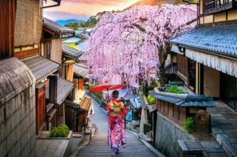 Discover the Best of Japan on an Escorted Tour