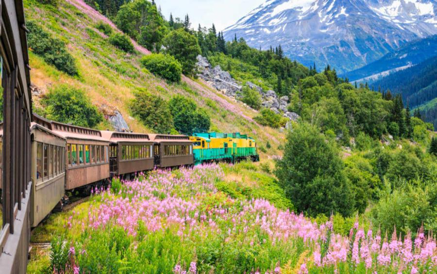 alaska cruise white pass yukon route railroad skagway alaska