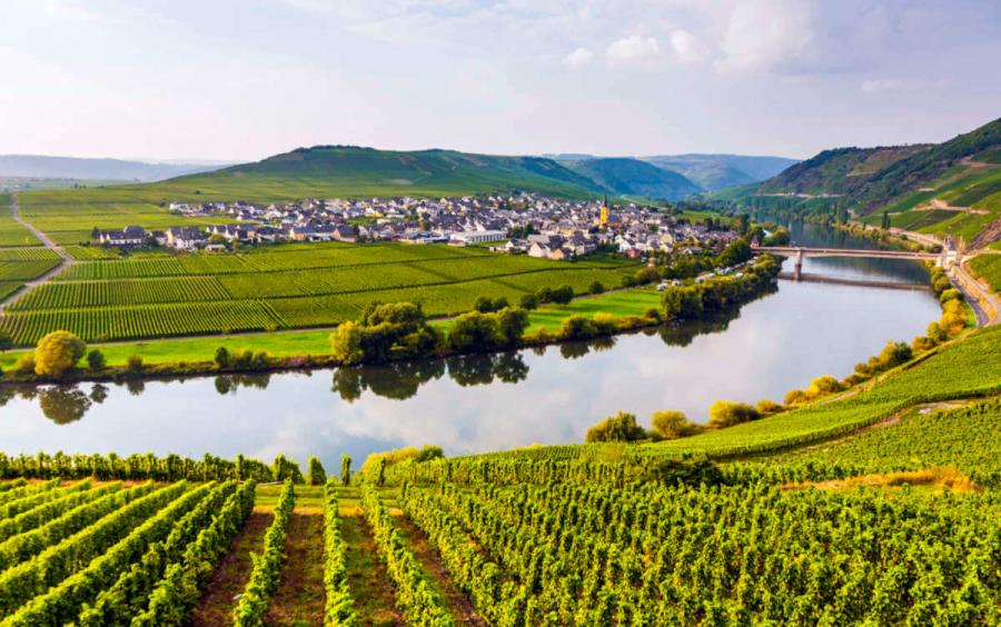 moselle river cruises moselle valley vineyards
