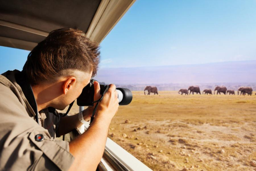 safari photography shoot from jeep