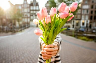 5 Great Reasons to Visit The Netherlands