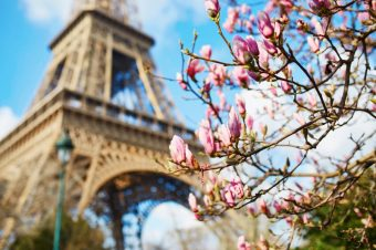 Why Take a Spring River Cruise With Us?