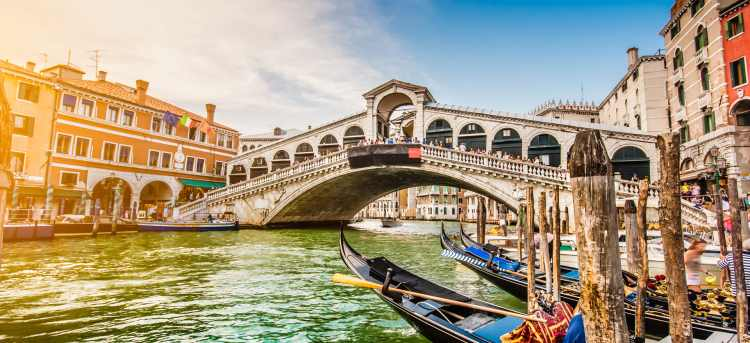 See the 16th-century Rialto Bridge over Venice's Grand Canal during our cruise
