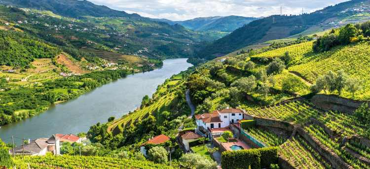 douro river valley and landscape | douro river | douro valley | River Cruises in Europe