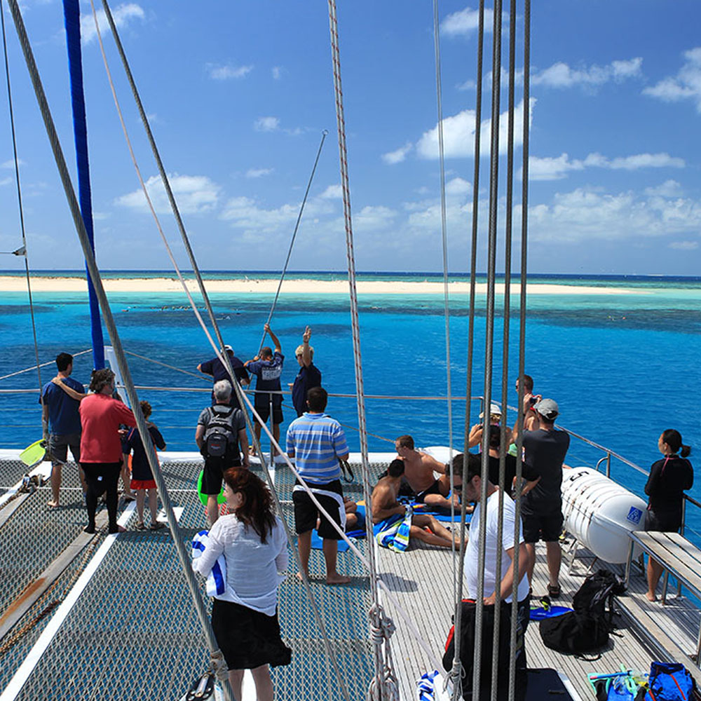 Boat cruise to Michaelmas Cay, Great Barrier Reef